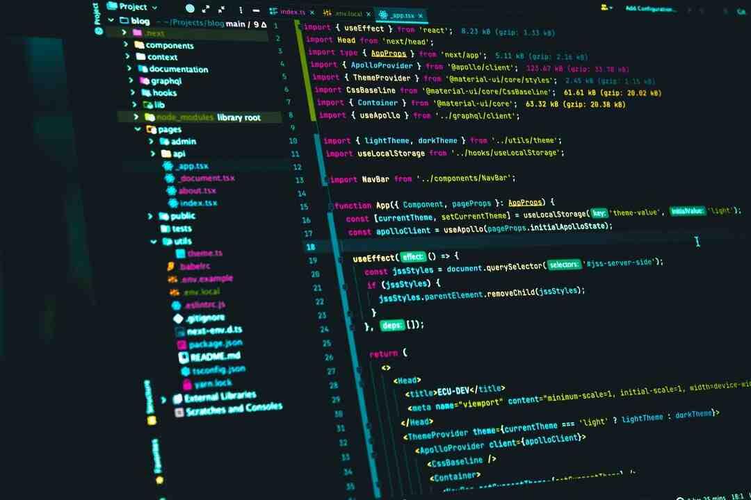 Quelle est la machine qui exécute un programme JavaScript inclus dans une page HTML ?